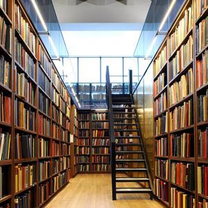 Библиотеки Рамони