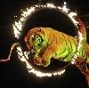 Цирки в Рамони